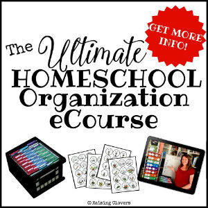 Ultimate Homeschool Organization eCourse 300